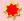 Angelkutter-angeln-sternrot