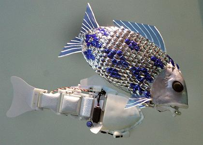robot-fish-and-robot-fish-without-scales-201106241131582.jpg