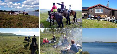 ferien-schweden-ferienwohnung-201106120030102.jpg