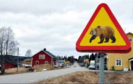 hede-schweden-201007202327294.jpg