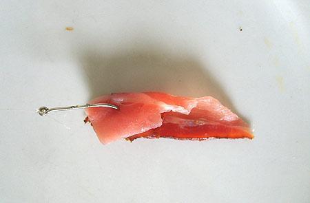 koeder-ostsee-201109101949254.jpg