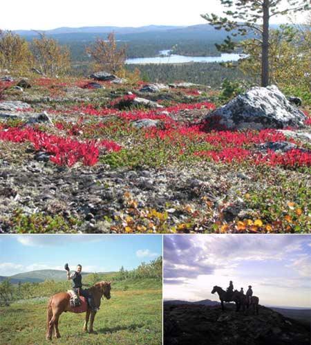 landschaft-schweden-201102252121426.jpg