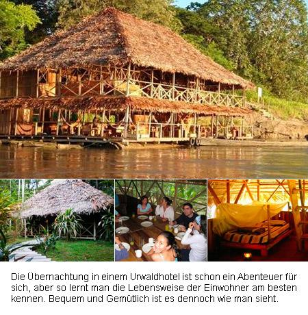 urwaldhotel-regenwald-201401030517401.jpg